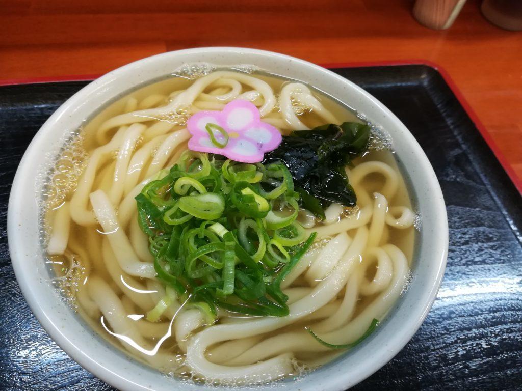 IMG 20180430 083345 1024x768 - 【香川】讃岐うどん食べ比べ。1位はさか枝!5位までを紹介。