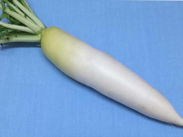 1628dd0741c450f818b13ed0f5c8fced - 新鮮長持ち!野菜の保存方法を写真付きで紹介