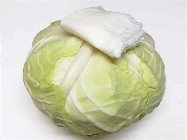 581a16cead802f901723451f72afb849 - 新鮮長持ち!野菜の保存方法を写真付きで紹介