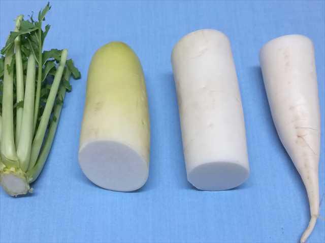6d9abca3e4bb11f4996911d57feb5d10 - 新鮮長持ち!野菜の保存方法を写真付きで紹介