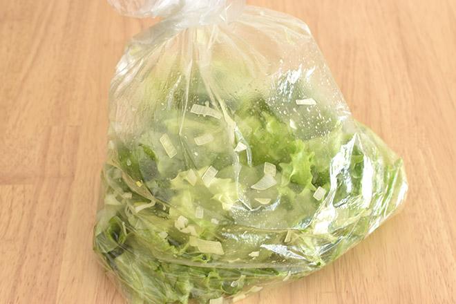 DSC 1897 - 【ねぎ塩だれ】グリーンリーフのチョレギサラダ