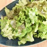 【ねぎ塩だれ】グリーンリーフのチョレギサラダ