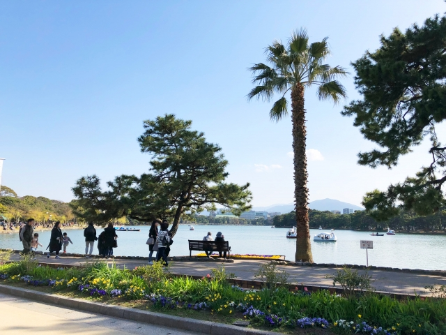 3554e1a00a5e08f0b93367b81fe4102b s - 福岡県民の憩いの場 博多から少し足を伸ばせば 大濠公園