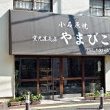 DSC 2497 160x160 - 福岡の伝統工芸品「小石原焼」の歴史