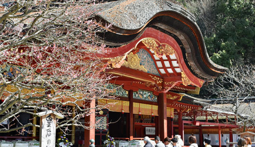 【福岡県3泊4日の旅】 おすすめ観光スポット・グルメ・土産を紹介|ちょろ旅#13