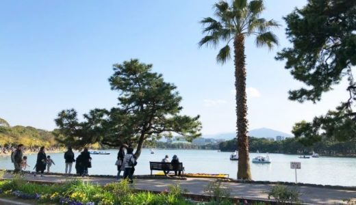 福岡のおすすめ観光スポット|ちょろ旅#13