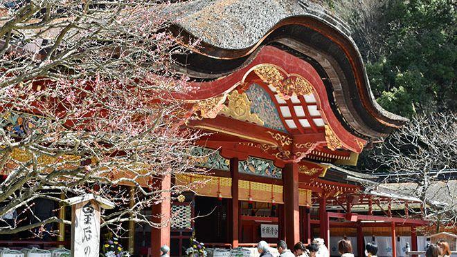 DSC 2622 2 1 - 福岡県3泊4日の旅の記録|ルーレットの旅#13