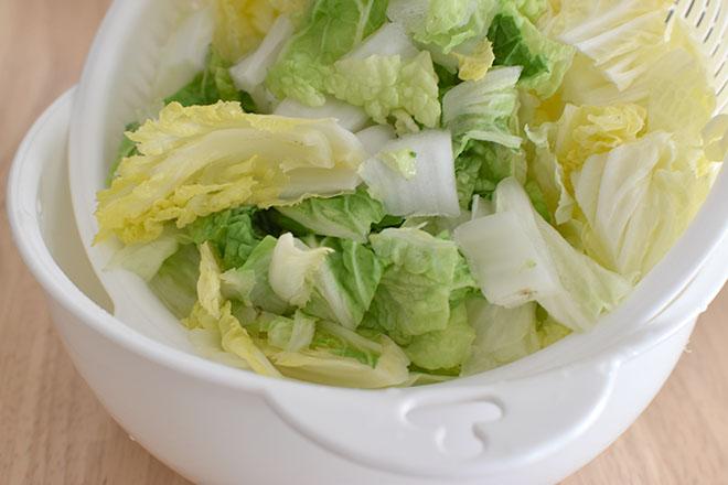 DSC 4764 - 【白菜だけ】和風コールスローサラダ