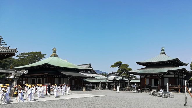 zentuji - 香川県3泊4日の旅の記録|ルーレットの旅#12