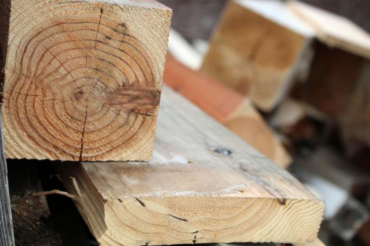 2922587 s - 教習③ その1 木材の基礎知識