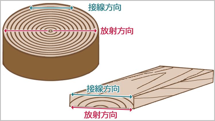 mokuzai 2houkou - 板目と柾目・元と末【木材の基礎知識】
