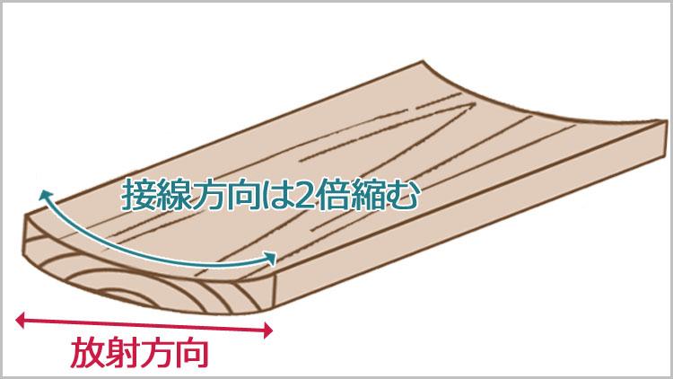 sessen 2 - 板目と柾目・元と末【木材の基礎知識】
