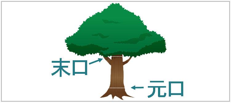 sue moto - 教習③ その1 木材の基礎知識