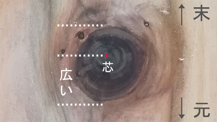husi motosue - 【木材の基礎知識】板目と柾目・元と末