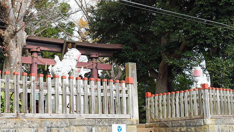 DSC 0541 - 佐倉散歩。ごほうびプリンから武家屋敷まで、いろいろ味わえる半日コース。