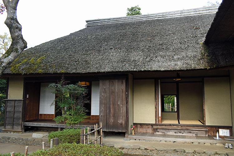 DSC 0587 - 佐倉散歩。ごほうびプリンから武家屋敷まで、いろいろ味わえる半日コース。