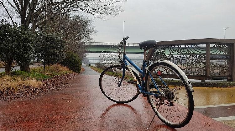 IMG 20201230 1141277 - 小晦日。なかよし橋 ~ 佐倉ふるさと広場 まで自転車で走る!