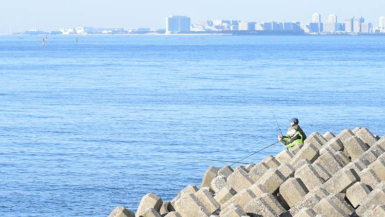 DSC 0565 - 富士山をうっすら鑑賞。茜浜緑地の散歩コース(茜浜緑道~茜浜運動公園)を紹介