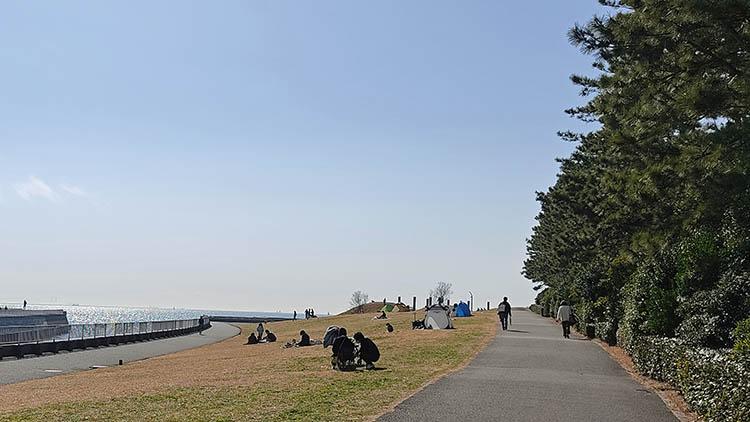 IMG 20210207 121147 - 富士山をうっすら鑑賞。茜浜緑地の散歩コース(茜浜緑道~茜浜運動公園)を紹介