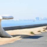 akanehama 160x160 - 八千代市「新川千本桜」のソメイヨシノが満開!
