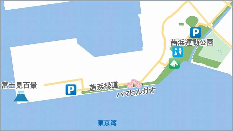 akanehama map2 - 富士山をうっすら鑑賞。茜浜緑地の散歩コース(茜浜緑道~茜浜運動公園)を紹介