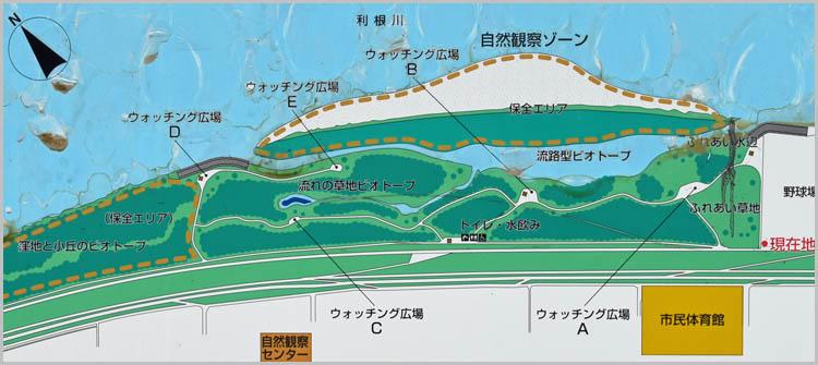DSC 02478 - 無料でBBQ!利根川ゆうゆう公園
