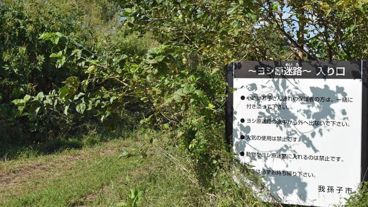 DSC 03711 - 無料でBBQ!利根川ゆうゆう公園