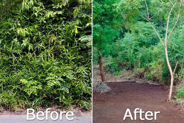 before after - 整地の工程は3つだけ。「刈る」「除去」「土ならし」を 初心者が実践