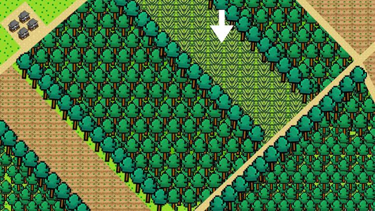 map1 - 経験値0からのキャンプ場作り。必要な装備は?
