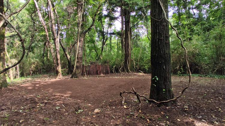 Snapshot 13 - 自力で雑木林を整地。プライベートキャンプ場でBBQを楽しむ!
